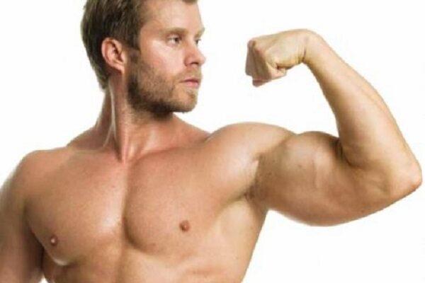 Muscoli delle braccia: quali sono gli esercizi migliori per svilupparli? Quale dieta seguire?