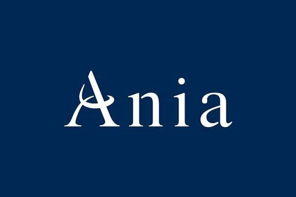 Ania assicurazioni: quali servizi e polizze offre? Come contattarla?